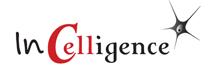 Logo_InCelligence_210px