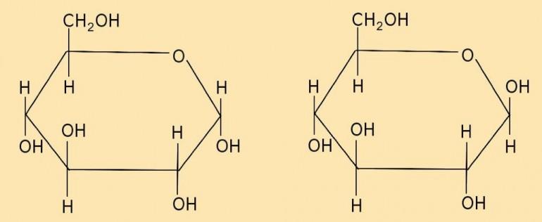 AB 1_2.1-3 alpha_beta_glucose