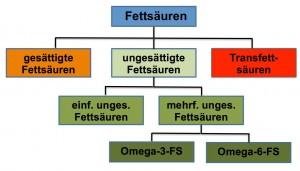 Abb. L_2.2-7 Fettsäuren / Fettsäuretypen