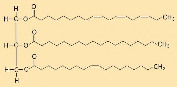 Abb. AB 1_2.2-8 mögliches Triglycerid in Olivenöl