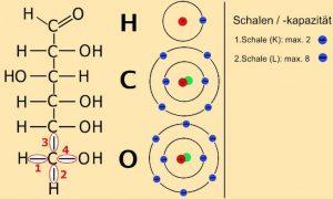 neu_ea_4-2-1-glucose_atome